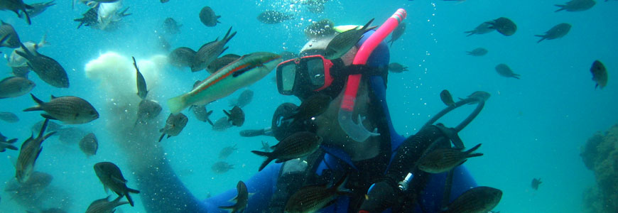 Discover Scuba Diving in Kassandra